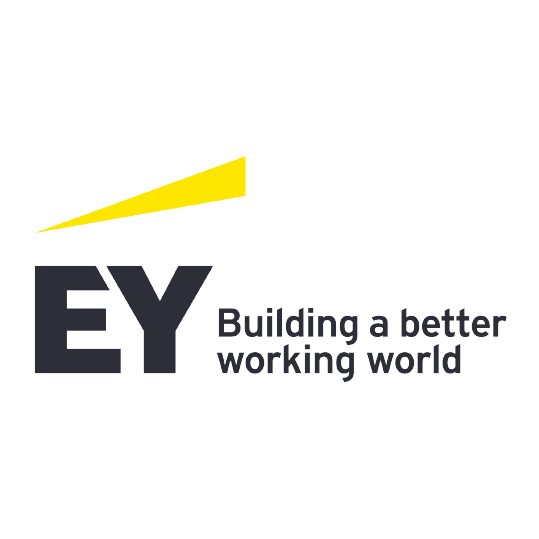 EY Cayman Ltd.