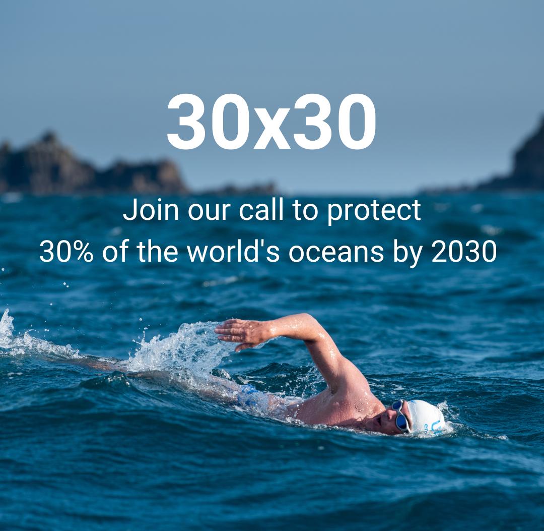 Ocean 30×30 Call for Action Webinar